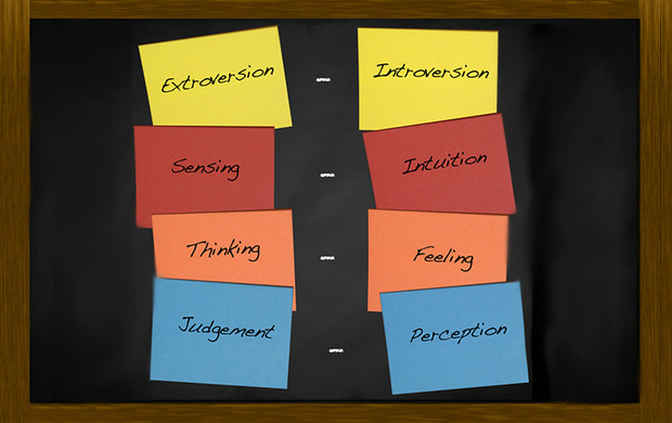 Personality Profiling - A waste of  time or a valuable development tool?